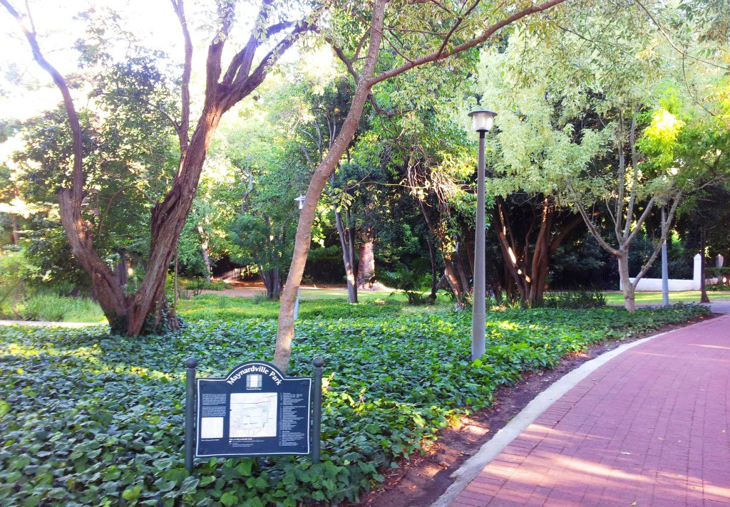 Maynardville Park has a wide variety of flora. If you look in the right place, you may even find bamboo. (image source Wikipedia)